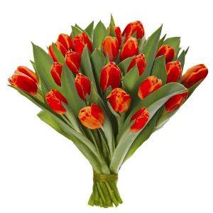 Bukiet z 25 pomarańczowych tulipanów