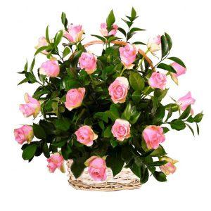 Kosz z 20 różowych róż