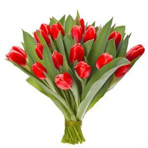 20 czerwonych tulipanów
