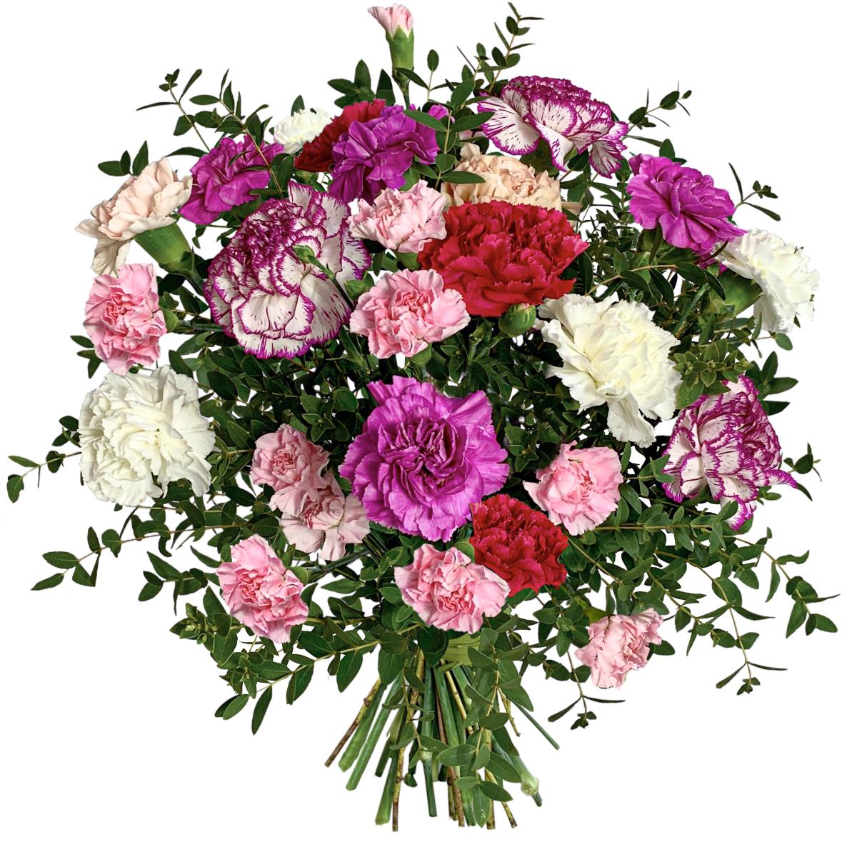 Bukiet Różowe Goździki