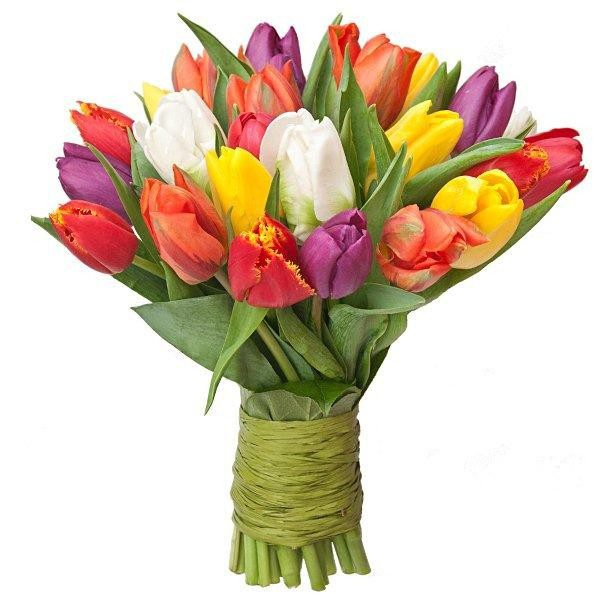 """,,Kolorowe tulipany"""""""