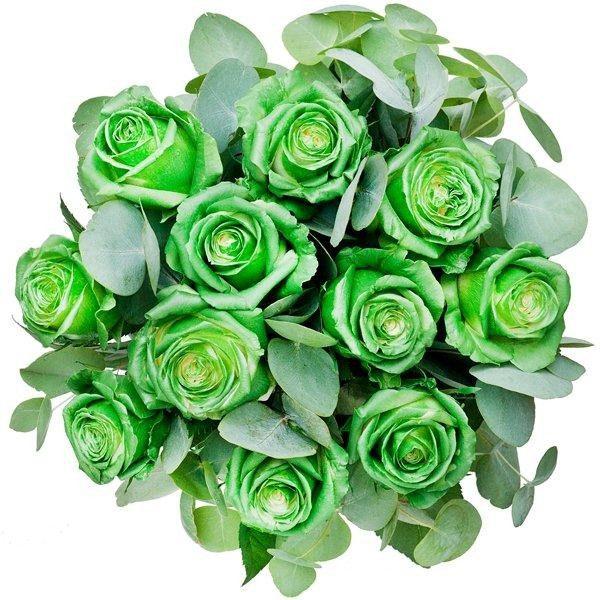 """,,Zielone róże z zieloną herbatą"""""""