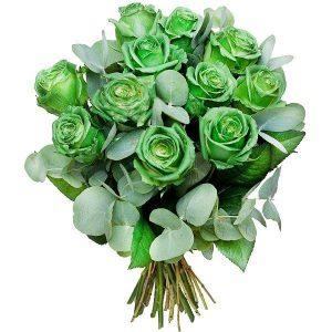 Zielone róże