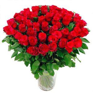 ,,50 czerwonych róż''