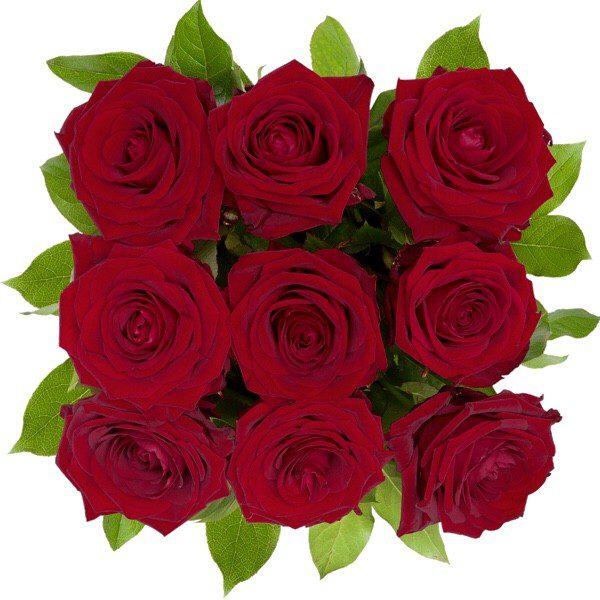 ,Róże w pudełku'