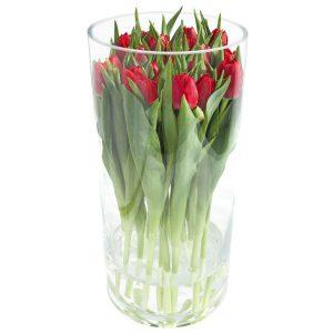 Bukiet, Czerwone tulipany w szkle'